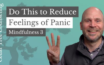 Mindfulness During Quarantine: One Way to Reduce Feelings of Panic (Part 3 of 5)