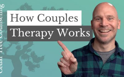 How Couples Therapy Works